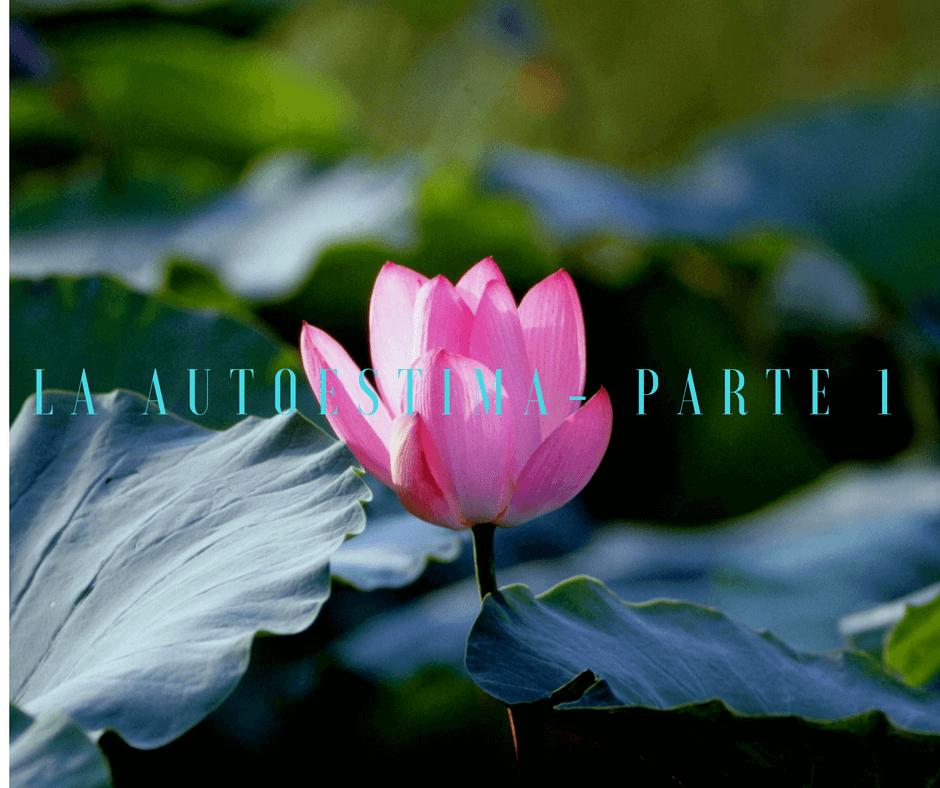 La Autoestima – Me quiero , no me quiero, me quiero, no me quiero… – Parte 1
